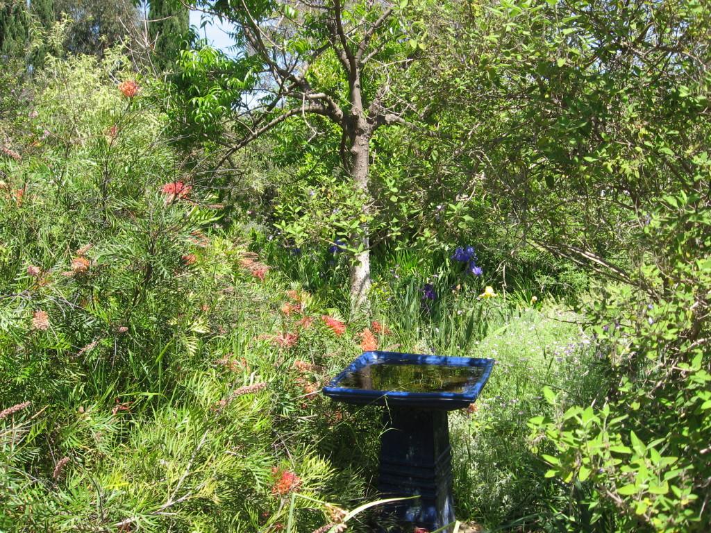 Arlington Garden, Pasadena, California